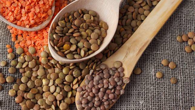 Lentils 5 healthy foods for summer idiotic world summer fruits and vegetables in india, Healthy summer foods, Healthy foods in summer, top 10 summer foods, summer eating tips, vegetables of summer, fruits in summer season in india, summer foods in india