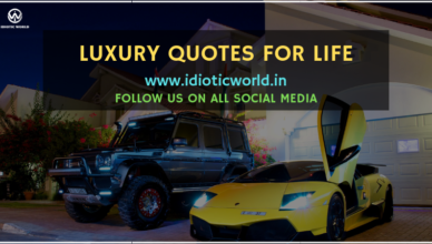 Luxury Car Quotes Archives Idiotic World
